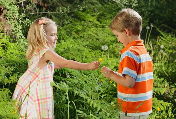 Фото: rewalls.com