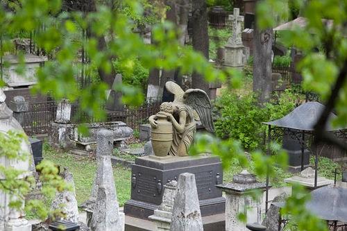 Фото: www.nsad.ru