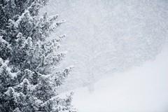 Мероприятия Светлой Седмицы пришлось отменить в Свердловской области из-за снегопадов