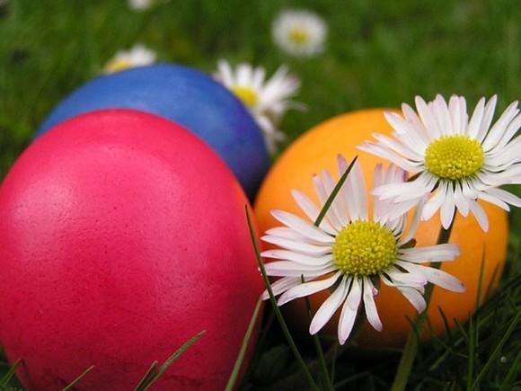 «Ночлежка» собирает куличи и пасхальные яйца для бездомных Петербурга