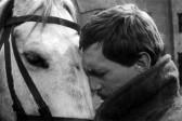 Разделенная любовь Николая Туроверова