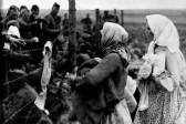 Женщины на перепутьях войны