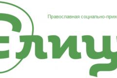 Православная социально-приходская сеть начала свою работу