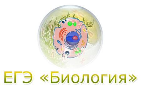 ЕГЭ-Биология. Узнай свой результат!