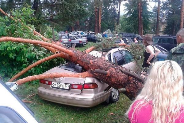 Челябинская епархия собирает средства в помощь пострадавшим от стихии на Ильменском фестивале
