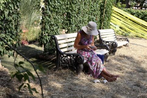В Москве может появиться парк «Библейских растений»