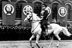 Маршал на белом коне
