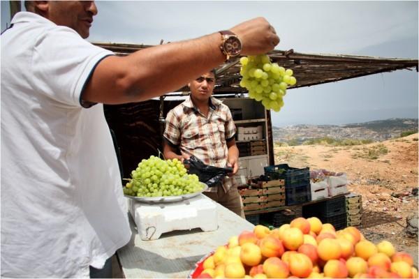 Северо-запад Иордании — это плодородные земли с мягким средиземноморским климатом