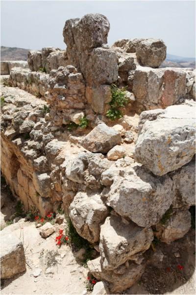 Руины внутри замка