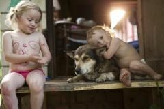 Погодки: в мире животных