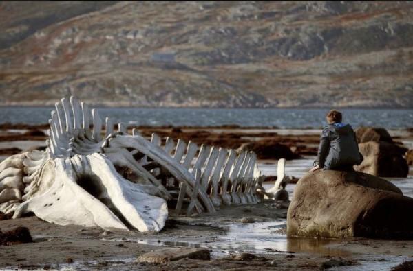 Фильм «Левиафан» завоевал главный приз Мюнхенского кинофестиваля
