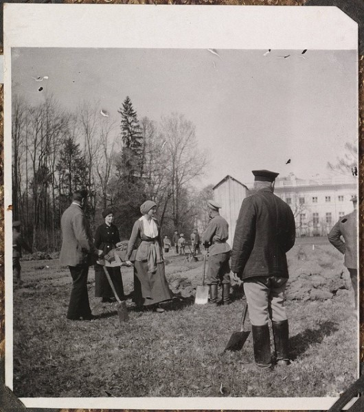 during captivity working in their garden on the grounds of Tsarskoe Selo-their palace standing in the distance.