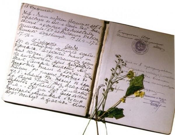 Дневник Ольги Николаевны