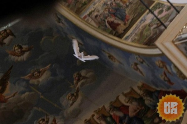 Перед молебном, который совершал митрополит Онуфрий, в храм залетел белый голубь