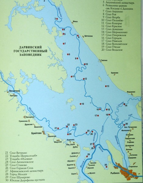 Схема Рыбинского водохранилища. Темно-синим отмечены русла рек до затопления Молога: город-утопленник