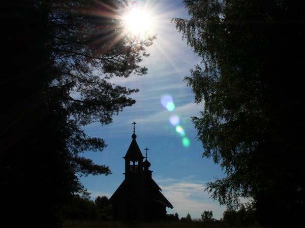 «Сказки вепсского леса» фотографа Евгения Молодцова
