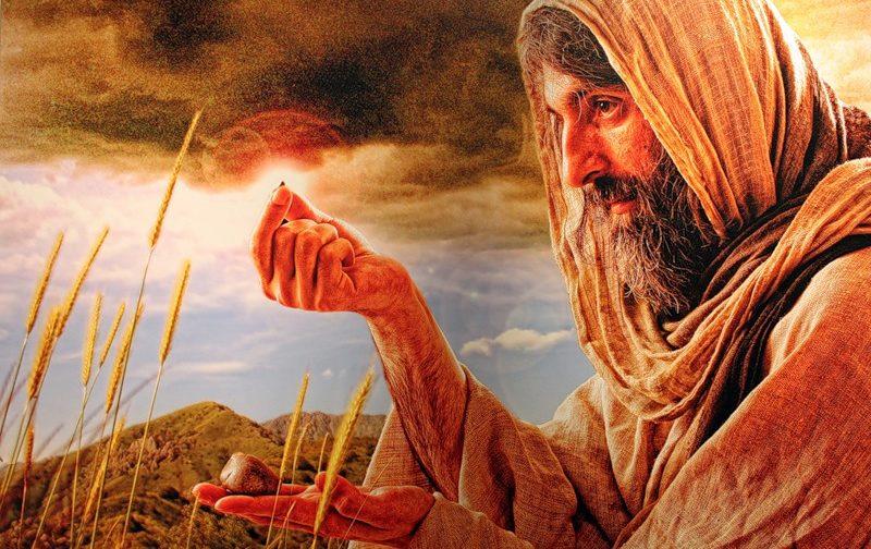 Притча о сеятеле: насколько Слово Божие будет живым и действенным в нашем сердце?