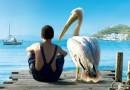 «Пеликан»: Фильм, в котором оживают символы и воскресает любовь