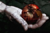 Протодиакон Андрей Кураев: О зависти, информационной войне и лишних печеньках