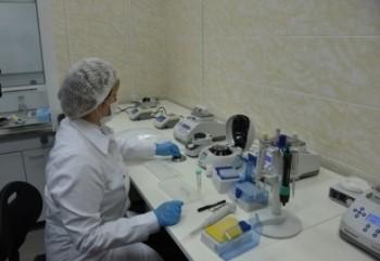 Подозреваемого в краже из смоленского храма задержали благодаря экспертизе ДНК