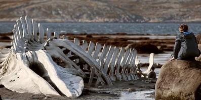 Фильм «Левиафан» выйдет в российский прокат в феврале