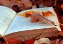 Что читать на выходных: основные материалы недели (29 сентября – 3 октября)