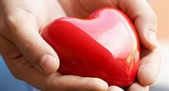 Подготовлен проект закона о донорстве органов человека