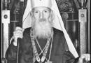 Святейший Павел, Патриарх Сербский, Митрополит Белградо-Карловацкий