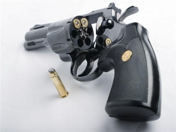 МВД: Решение правительства не предполагает легализации ношения гражданами любого оружия