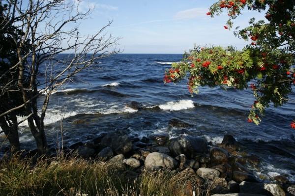 И надеяться, что житейское море он, более-менее, переплыл и достиг тихой бухты на онежском берегу. Кстати, монастырь принимает паломников и даже просто благочестивых гостей. Электричества нет, но природа чудо как хороша.