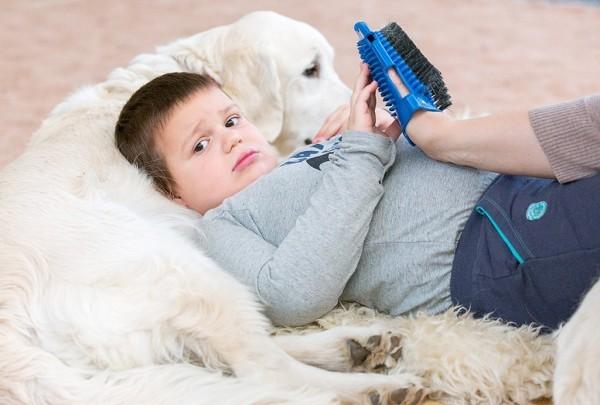 У Саши – аутизм, он ходит на занятия канис-терапией третий год. По словам папы, на занятиях он расслабляется, становится более спокойным