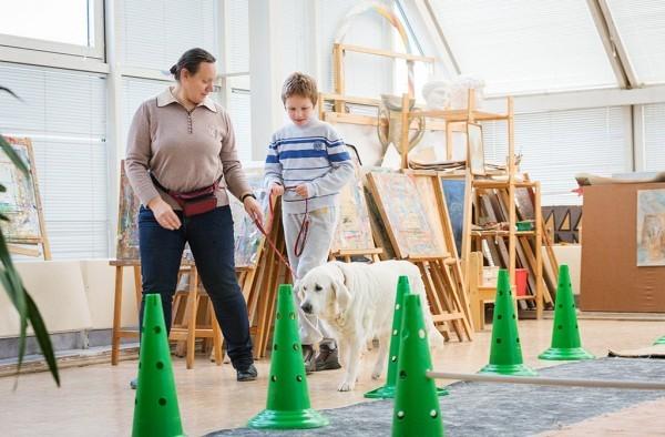 Илья и собака Джой медленно обходят зал. Илья еще боится, но уже держит Джоя за поводок.