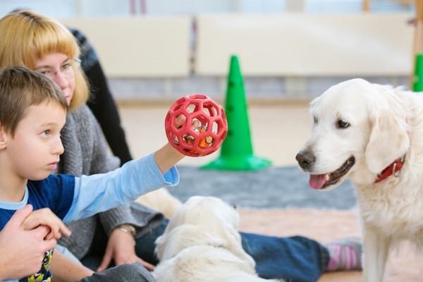 Дима протягивает собаке мячик