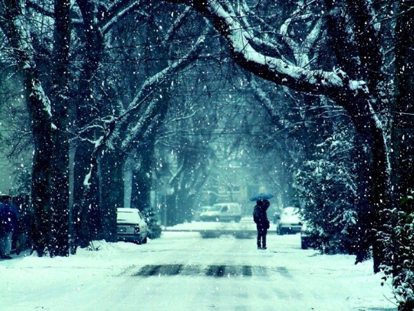 251434__winter-frost-snow-road-trees-a-couple-girl-guy-kiss-mood-feelings-photos-background_p