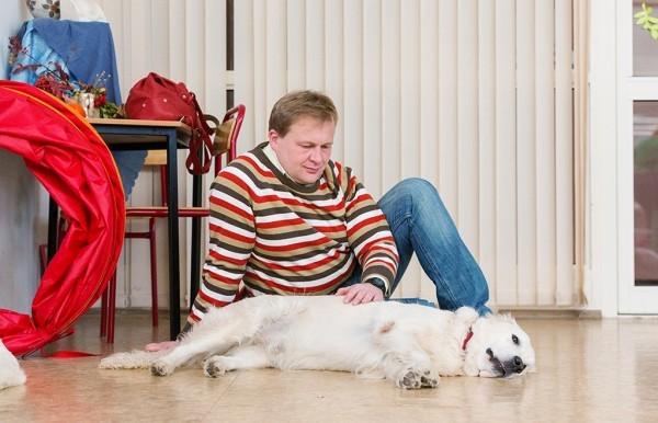 Пока Таня и Коля занимаются их папа – Сергей – тоже общается с собакой
