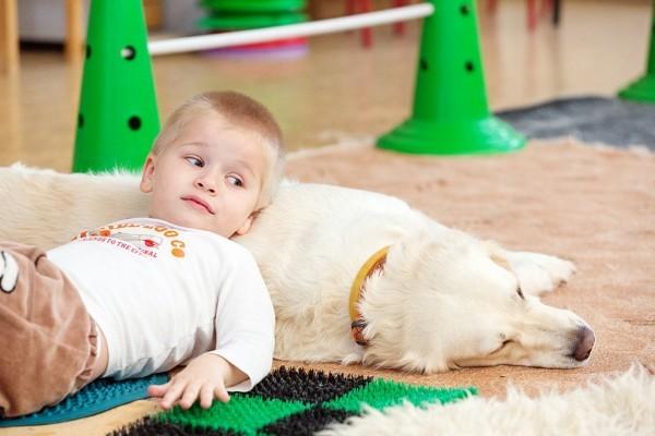 В работе канис-терапевтов нет мелочей, и даже коврики здесь не случайны: разнофактурная поверхность в сочетании с контрастным теплом и мягкостью собачьей шерсти способствует развитию сенсорной чувствительности ребенка