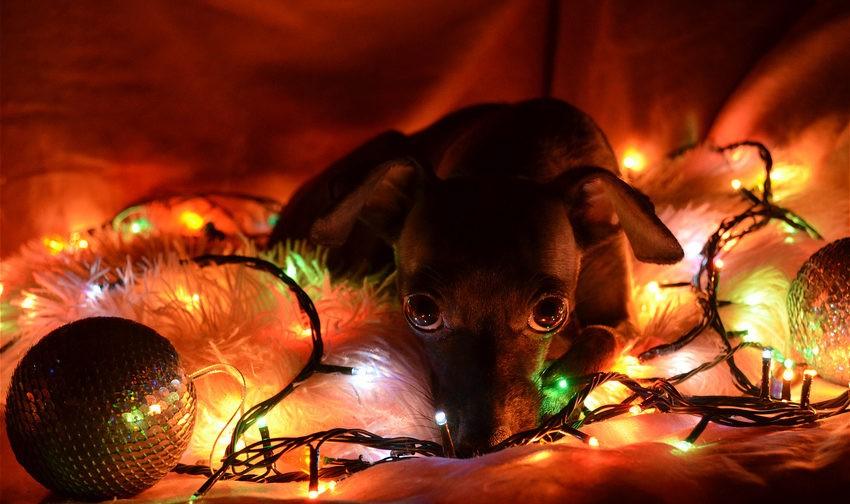 Новый год – грустный праздник?