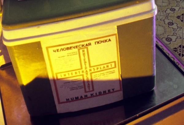 Отказавшиеся стать донорами органов граждане не смогут сами претендовать на трансплантацию