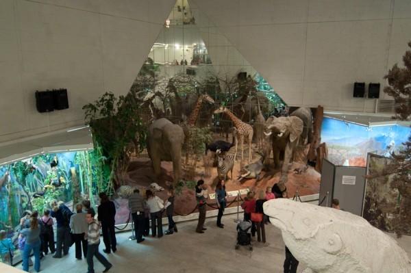 820 тыс человек бесплатно посетили столичные музеи в дни Рождественских каникул