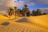 Православные путешественники пересекут пустыню Сахару