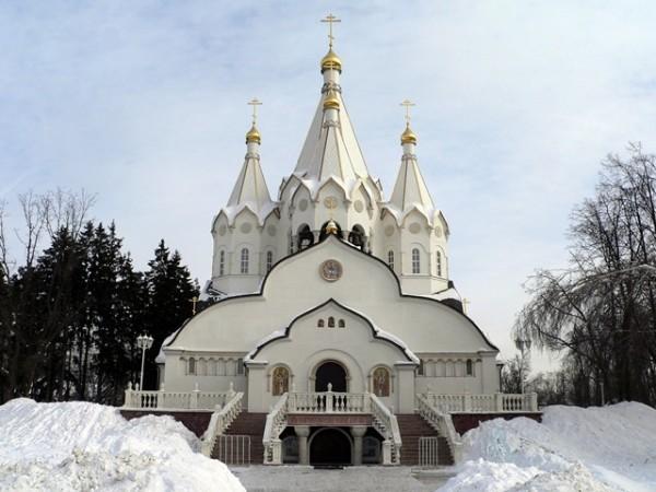 Православная общественность просит остановить застройку Бутовского полигона