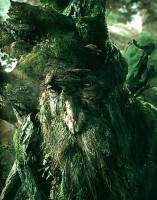 treebeard_1