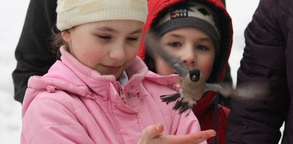 Выпускание птиц на Благовещение – красивая традиция или современная жестокость?