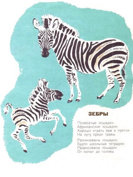 Самуил Маршак. Детки в клетке. Иллюстратор Евгений Чарушин. Детгиз, 1935 г.