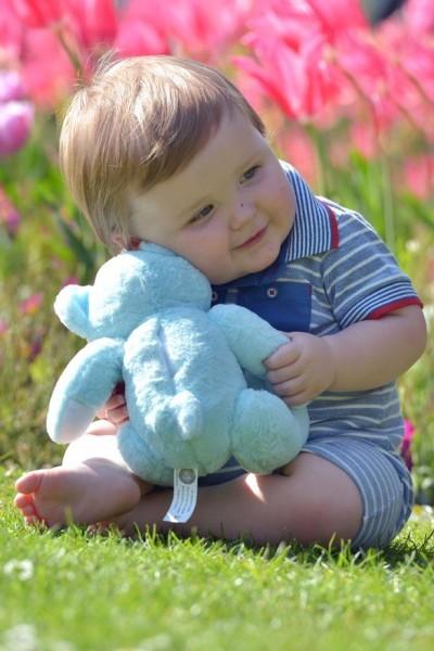 Вспоминая Тедди: Ной со своим мишкой «Тедди»