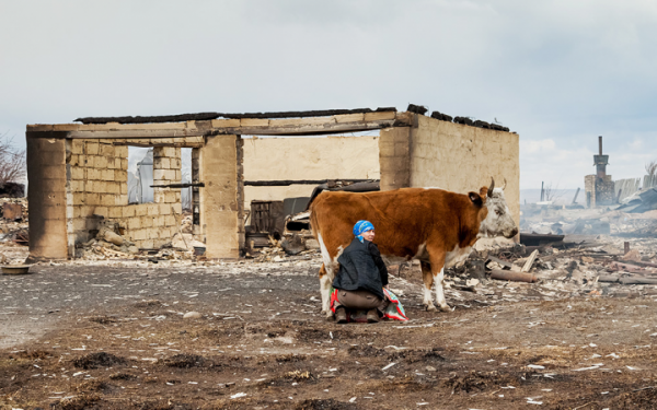 Сибирь в огне. Как помочь и как не надо помогать пострадавшим
