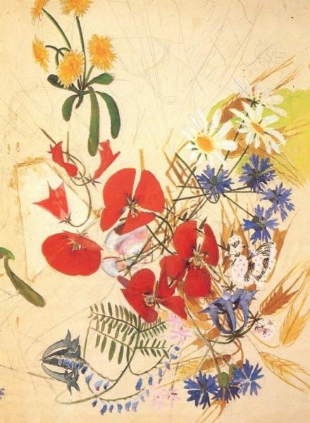 polevie-cvety
