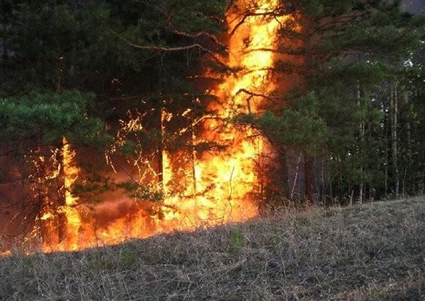 Доброволец о пожарах в Забайкалье: Очаги возгорания тушат осадки