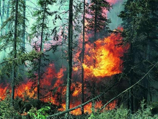 Доброволец о пожарах в Забайкалье: В одном из сел огонь не дошел до домов буквально 200 метров