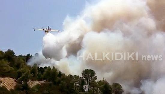 Пожар рядом с сухопутной границей Афона частично удалось взять под контроль